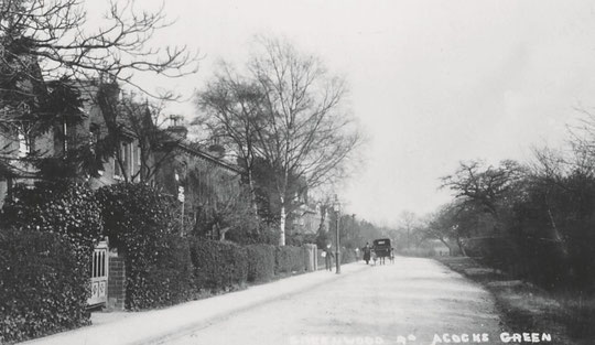 Another view of Greenwood Road, c. 1905
