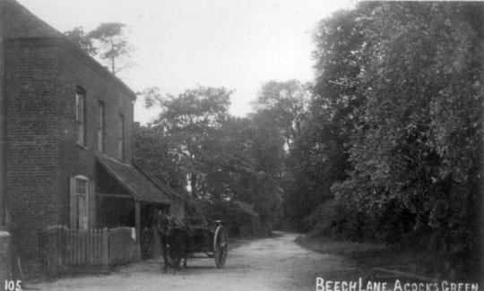 Beech Lane, c. 1905