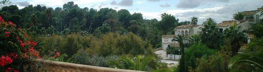 Aussicht von Terrasse vor Wohnzimmer