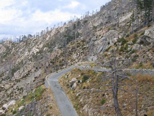 auf abenteuerlichen Straßen Richtung Col de Serba
