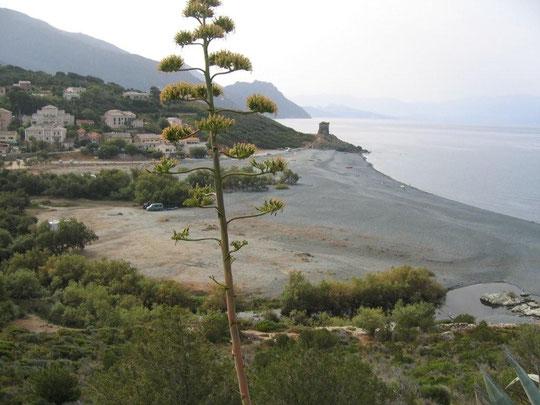 Stellplatz Marine d'Albo