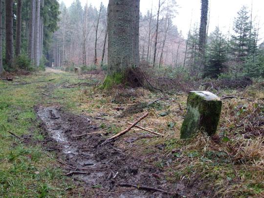 An einem Waldweg steht dieser Stein, ebenfalls mit D und L darauf