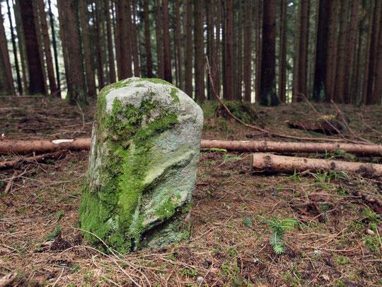 Grenze Bochingen / Wittershausen (Hirschstange) - Jahr unbekannt (evtl. Forstgrenze)