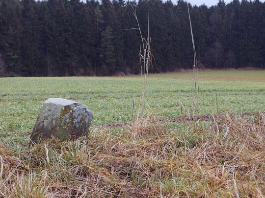 Unweit der Ruine Birnburg, steht dieser Stein zwischen Dunningen und Lackendorf