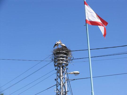 рядом с городским флагом