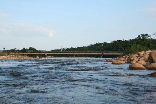 rio tame magestuoso