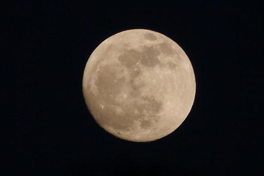 Der Mond am Abend des 24.04.2013, 20:56 MESZ (Aufnahmeort: 50321 Brühl/Deutschland)