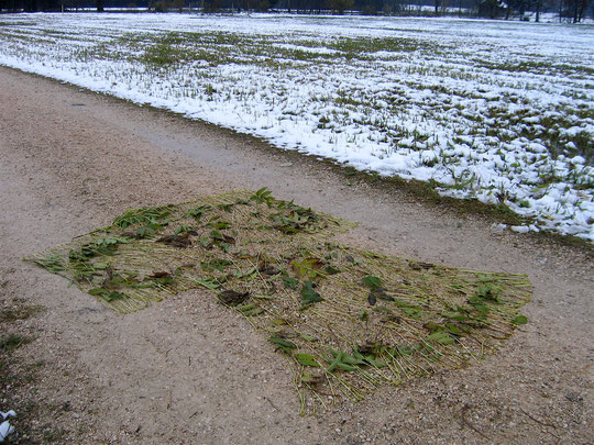 winter  walk  austria  2007