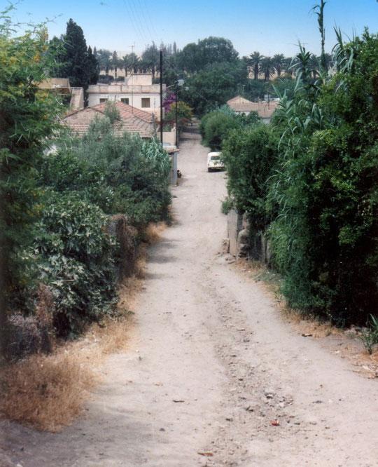 Fg St André - La rue des Jardins - Doc.Louis Gomez