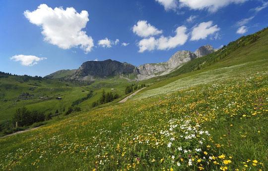 Beim Rougig am Schächenteler Höhenweg: Bild Christian Camenzind: www.kalenderbild.ch