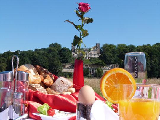 Frühstück an der Elbe, Frühstück auf den Elbwiesen