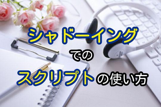 通訳 英語 シャドーイング スクリプト 練習 お手本 教材 訓練 山下えりか