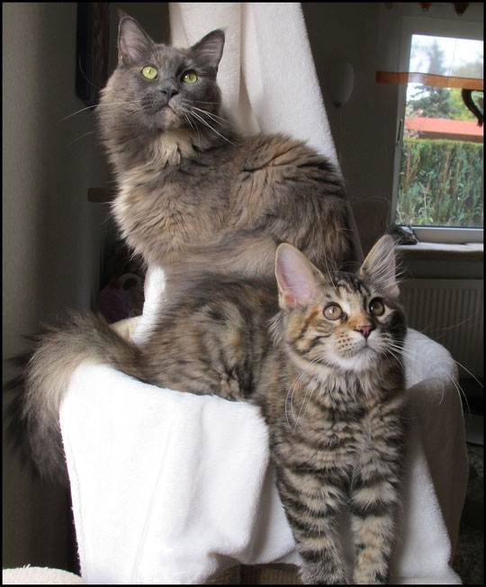 Trixi mit ihrer Mama Luise