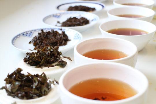 こゆるぎ紅茶 テイスティング
