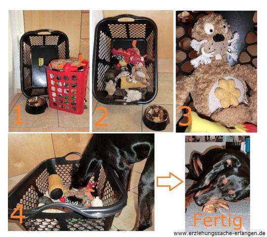 cfc88f8042b4f0 Ihr braucht einen Wäschekorb (oder einen Karton für kleine Hunde)