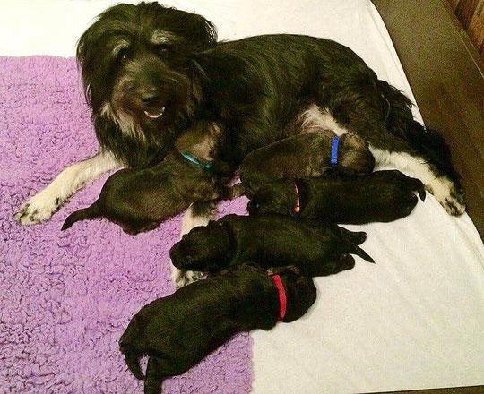 Die glückliche Mama und die Jungs
