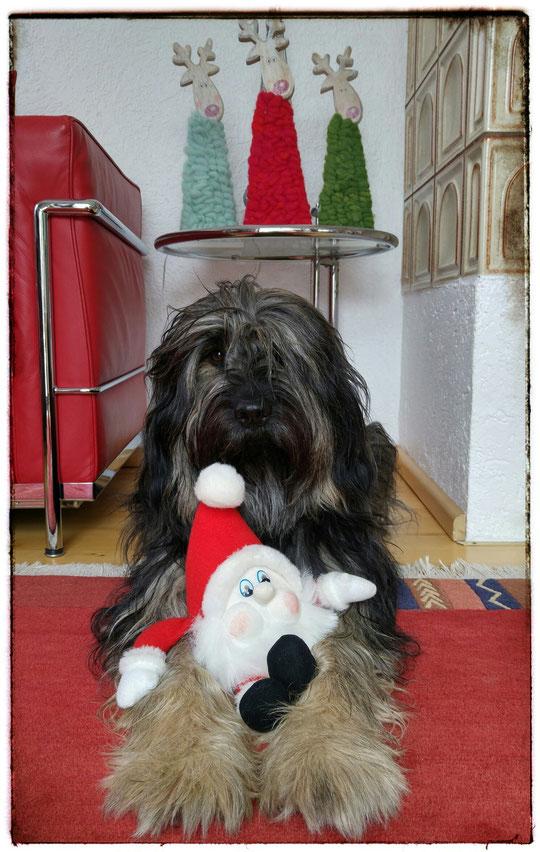 Ich habe einen Nikolaus gefunden, ihr auch?