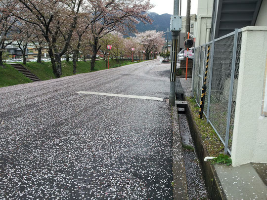 奈良県御所市の道