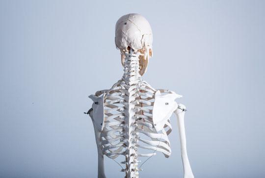 奈良県御所市の肩甲骨の動きが少なく首痛の男性