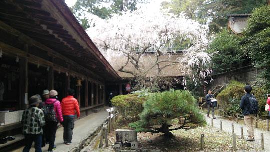 奈良県吉野の御寺