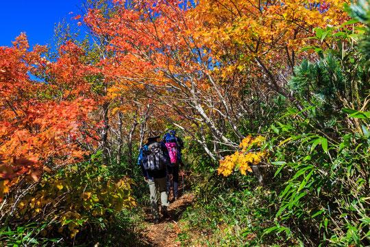 登山の途中で腰が痛い奈良県御所市の男性