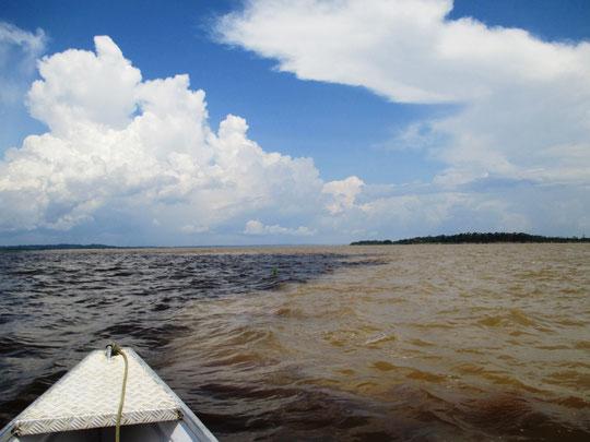 Zusammentreffen Schwarzwasserfluss mit Weißwasserfluss