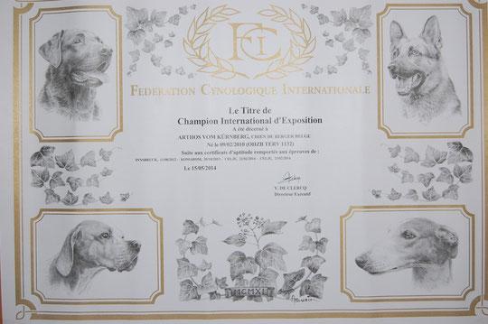 Internationaler schönheits Champion