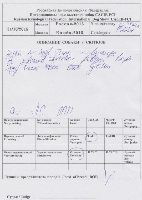 CW.Л.С,ЛПП,Ч выставки Россия-2015. чем РКФ,ВОВ эксперт EKATERINA SENASHENKO