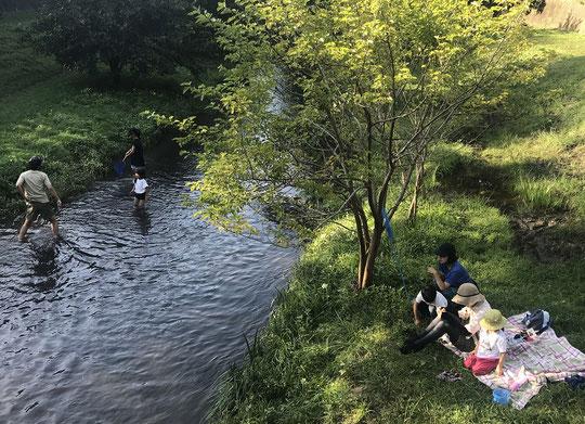 10月3日(2021) 野川で水遊び:緊急事態宣言が開けた最初の日曜日。野川で水遊びを楽しむファミリー