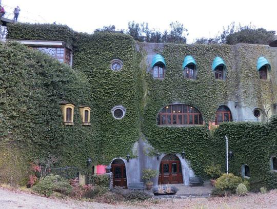 2月25日(2016) 緑の館:開館して15年を迎える「三鷹の森ジブリ美術館」。蔦におおわれた外観も絶景です(2月24日撮影)