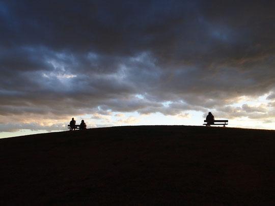 12月11日(2015) 丘の上のシルエット:武蔵野の森公園の展望の丘にて