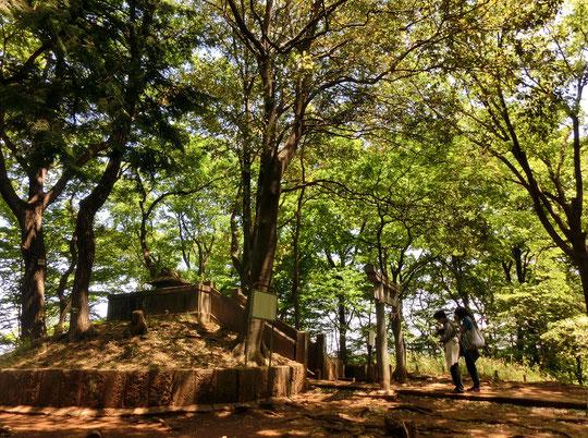 ●浅間山の頂上(標高80m)にある神社です。