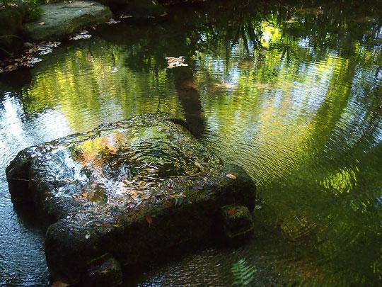 ●ラリーポイントG「はけの森カフェ」がある美術の森にある池。国分寺崖線(ハケ)の湧水に木々が反射していました。はけの森美術館では「武蔵野の四季と共生」と言う企画展示が開催されていました。