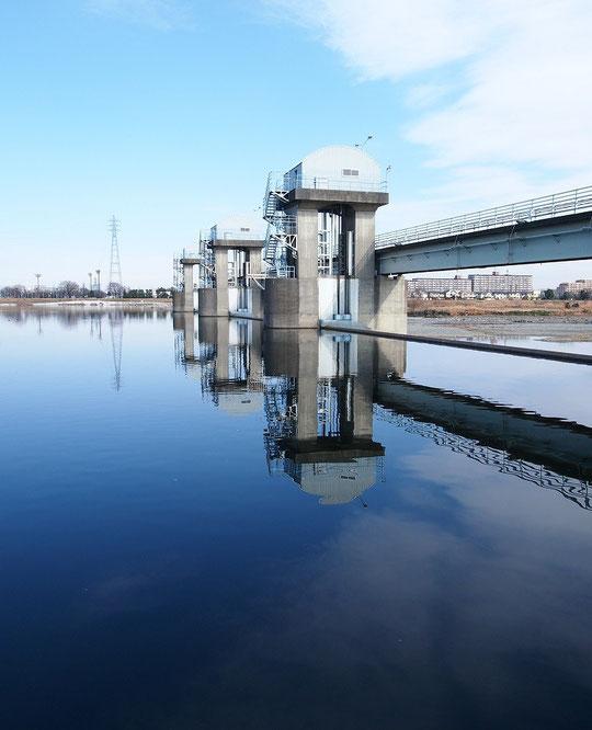 1月5日(2015) ニケ領上河原堰提:調布市の対岸、川崎市多摩区から1月4日に撮影。多摩川を挟んで双方に布田という地名がある場所です