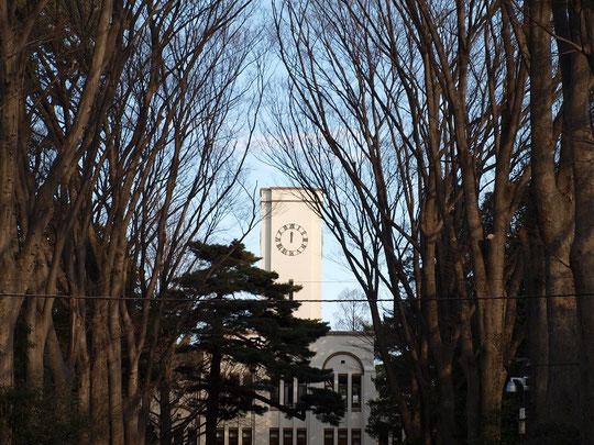 2月7日(2016) 農工大とケヤキ並木(府中市):建物は、東京農工大学農学部の本館。昭和9年に東京高等農林学校として建てられたもので、国登録有形文化財。3連アーチやアールデコ風の装飾、内部には和風の格天井があるそうです