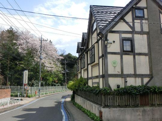 ●シェイクスピアハウス東京です。写真の左側が高安寺の敷地で、保育園があります。