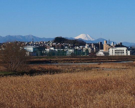 1月12日(2015) 街の向うの富士と山並み:府中多摩川かぜの道から聖蹟桜ヶ丘の町を見た景色です