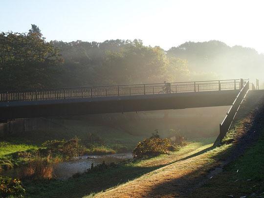 11月10日(2014) 朝もやの櫟木(くぬぎ)橋 野川公園内
