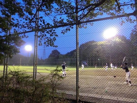 11月6日 夕暮れの野球場(武蔵野公園) 2011年の撮影