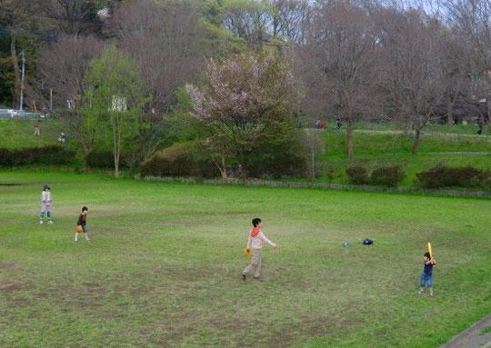 野川の近くの空き地で野球をする家族に遭遇。とても微笑ましい光景