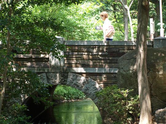 7月15日(2018) せせらぎに架かる橋:玉川上水が三鷹駅近くでJR中央線の下に暗渠化する近くにある名もない橋(三鷹駅北側)。辺りは小空間ながらも心やすらぐ場所です。