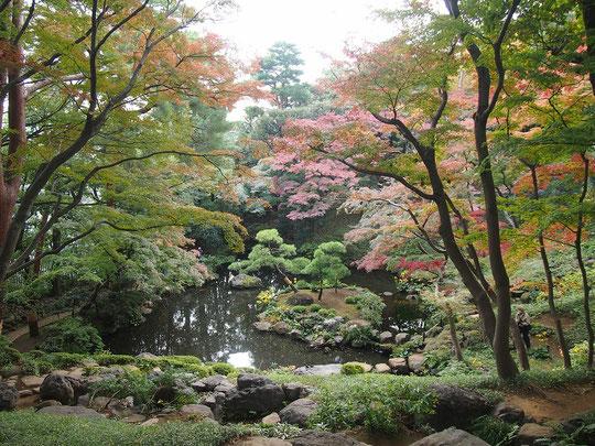 ●紅葉亭から次郎弁天池を見下ろす眺め。イロハモミジが紅葉するとまさに絶景です。