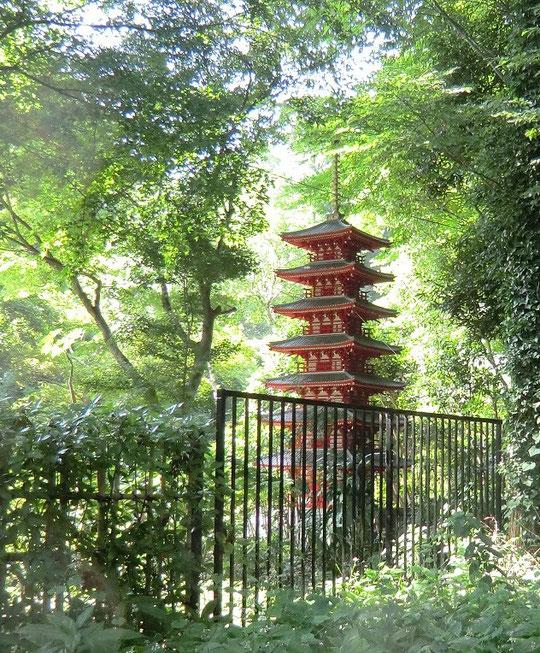 8月8日(2013) 七重塔復元模型:国分寺市内の田中為義棟梁が復元模型設計書を参考に1/10スケールで制作したもの。七重塔は、国分寺のシンボルで高さが60mくらいあったと言う。おたかの道湧水園(国分寺市)に設置されている。8月1日に園の外のお鷹の道から撮影