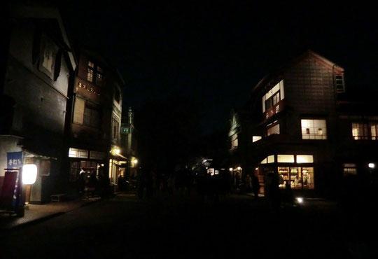 ●夜間特別公開の園内は、いつもとは異なる雰囲気。'あかりとくらし'をテーマにイベントや展示が行われていました