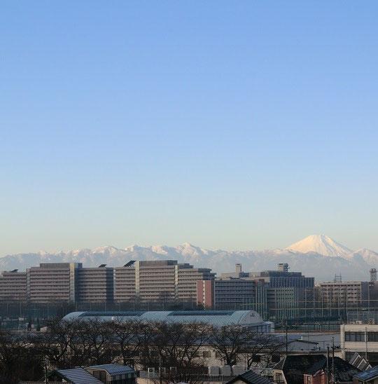 12月29日(2013) ビルのむこうの山並み:国立天文台裏の富士の見える場所で