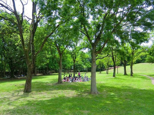 くじら山のそばの木の下で昼食をとっている人たち。とても気持ちよさそう。5月の陽光にも恵まれて!