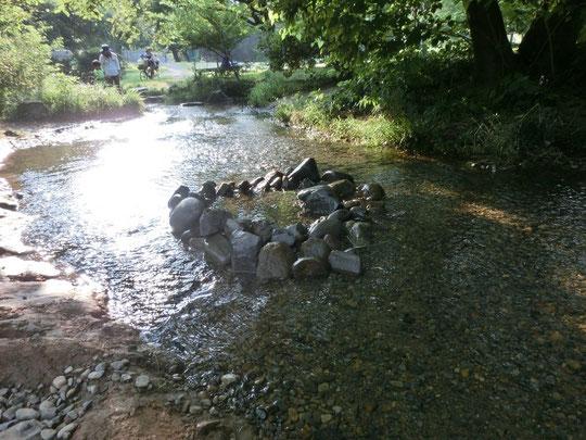 7月28日(2015)水遊びのできる場所:豊富な水が流れる野川公園の湧水広場