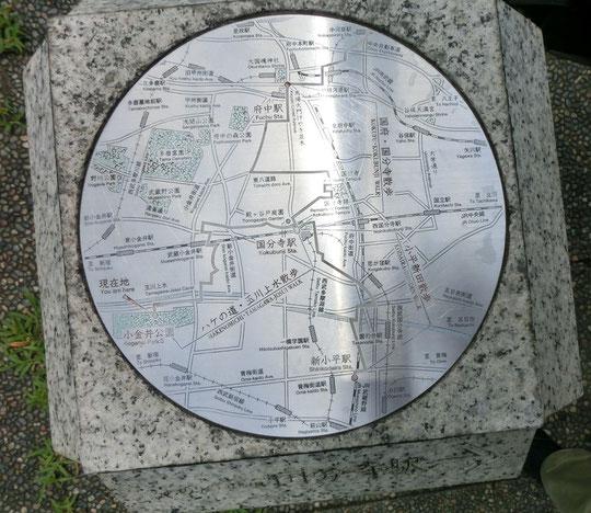 7月20日(2016) 街角の地図:小金井公園正面入り口近くの路上で目にしたMAP。国分寺駅が中心で南が上になっています。ハケの道・玉川上水散歩、国府・国分寺散歩、小平新田散歩などのルートが描きこまれてあります。いつ、だれが設置されたものなのでしょうか?