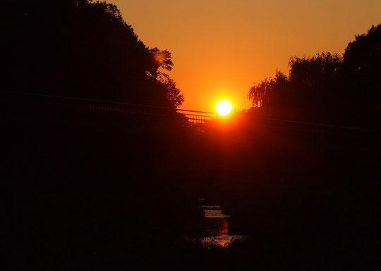 7月10日(2015) 野川の夕陽:梅雨晴れの夕方、くぬぎ橋にかかる夕陽
