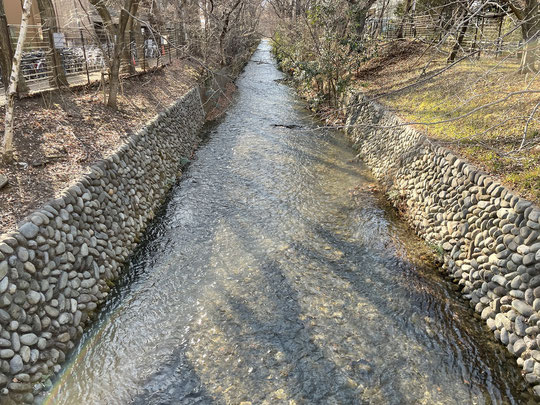2月7日(2020) 遠い山並みⅡ:2月1日に国分寺崖線の上(東八道路)からの眺めを紹介しましたが、今回は昭和記念公園(立川)からの眺めです。前回よりも西側、奥多摩方面と思われます。高い山は雲取山かもしれません。